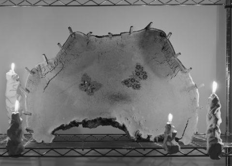 A black and white photos of a material with butterflies printed on it and candles lit.